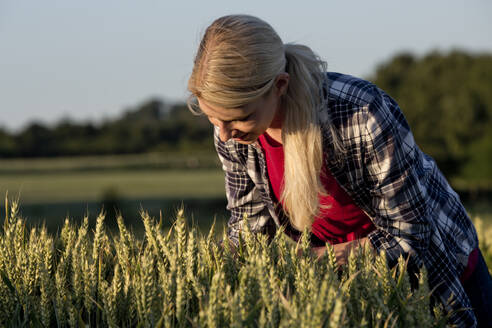 Young woman in a grain field - FLLF00308