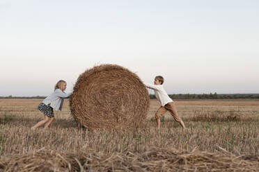 Two kids rolling a haystack on the field - EYAF00624
