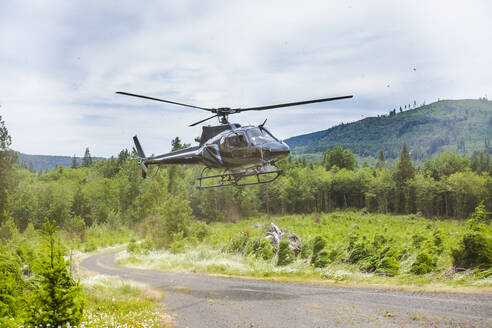 Helicopter landing on gravel road in the forest. - CAVF65764