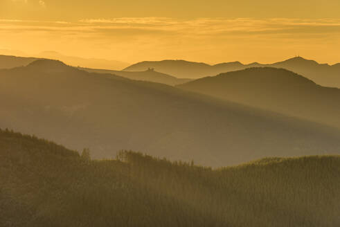 Mountain peaks and forest at sunset, Washington State, United States of America, North America - RHPLF12470