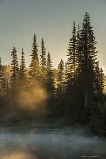 Morning sunlight and mist, Reflection Lake, Mount Rainier National Park, Washington State, United States of America, North America - RHPLF12473