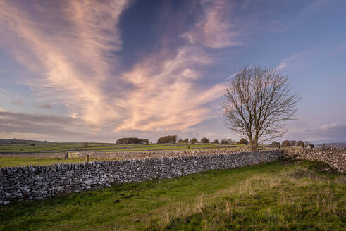 Stone walls and fields at sunset in autumn, Sheldon, Peak District National Park, Derbyshire, England, United Kingdom, Europe - RHPLF12584