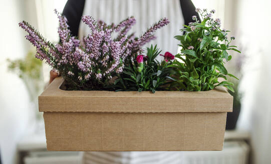 Close-up of woman holding flowers in a cardboard box - HAPF03049