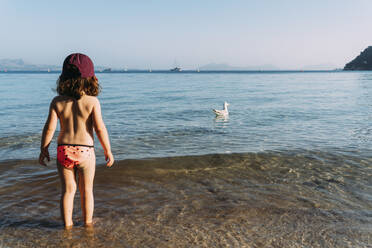 Back view of little girl standing at seafront watching swimming seagull, Pollenca, Mallorca, Spain - GEMF03249