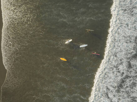 Aerial view of surfers at the beach - CAVF66080