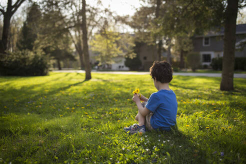 Boy holding flowers while sitting on grassy field in backyard - CAVF66479
