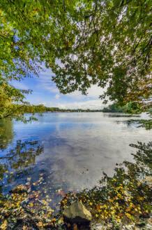 Germany, North Rhine-Westphalia, Dusseldorf, Unterbach, Landscape with lake - THAF02620