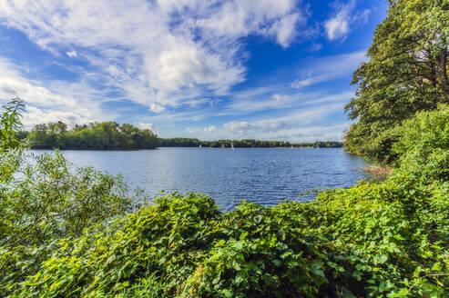 Germany, North Rhine-Westphalia, Dusseldorf, Unterbach, Landscape with lake - THAF02623