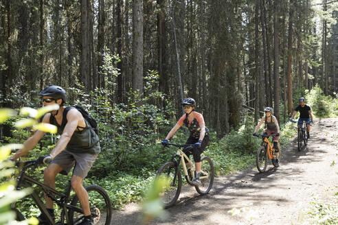 Friends mountain biking on trail in sunny woods - HEROF39757