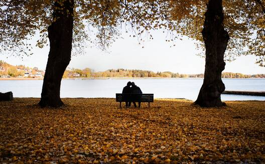 Couple sitting on a bench surrounded by fall leaves enjoying scenery - CAVF67354