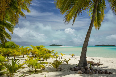Coconut palm trees at beach against cloudy sky - CAVF67873