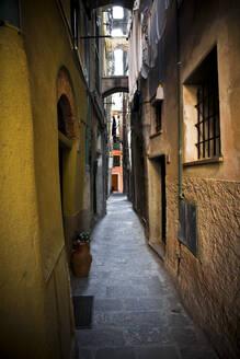 Narrow alley in Vernazza, Cinque Terre, Italy - GIOF07376