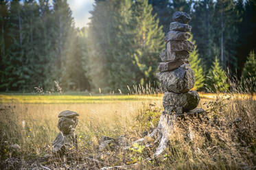 Stone pyramid at forest edge, Harz, Braunlage, Germany - FRF00873