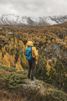 Hiker standing and looking over alpine plateau in autumn, Sondrio, Italy - MCVF00070