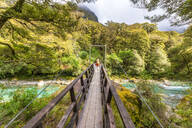 Female hiker walking across swing bridge over river, Fiordland National Park, South Island, New Zealand - SMAF01662
