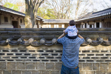 Back view of father and baby girl visiting the Secret Garden, Changdeokgung, Seoul, South Korea - GEMF03265