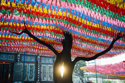 Jogyesa Temple decorated with paper lanterns at sunset, Seoul, South Korea - GEMF03268