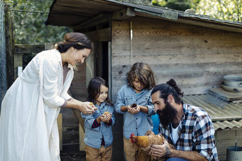 Family with two kids holding chicken and chicks on an organic farm - SODF00294