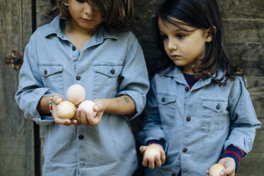 Two kids holding eggs at chicken coop on an organic farm - SODF00300