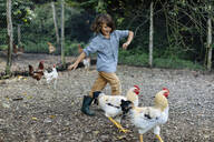 Boy chasing chickens on an organic farm - SODF00303