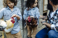 Father with two kids in chicken coop on an organic farm - SODF00309