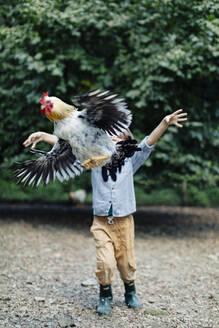 Boy releasing chicken on an organic farm - SODF00312