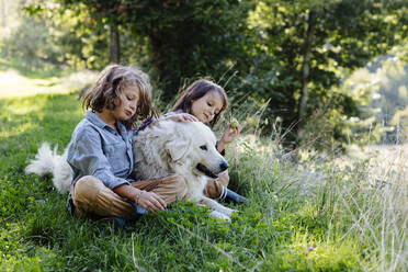 Two kids relaxing with dog on a meadow - SODF00336