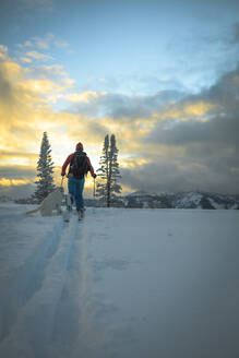 Rear view of man with dog skiing on snow covered field - CAVF68276