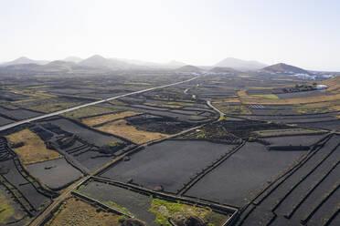Felderlandschaft mit schwarzem Lavakies, bei Tinajo, Luftbild, Lanzarote, Kanaren, Spanien - SIEF09292