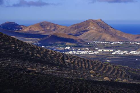 Weinkulturen an Berghang, Dörfer Uga und Yaiza, rechts Montana del Medio, Weinanbaugebiet La Geria, Lanzarote, Kanaren, Spanien - SIEF09298