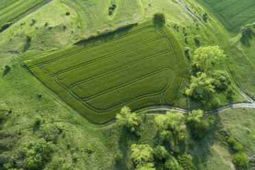 Germany, Bavaria, Aerial view of green countryside field in spring - RUEF02366