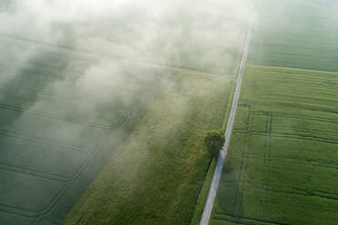 Germany, Bavaria, Aerial view of morning fog floating over country road and green fields in spring - RUEF02369