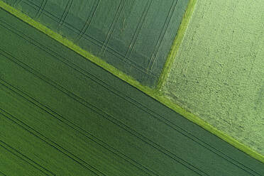 Germany, Bavaria, Aerial view of green countryside fields in spring - RUEF02381