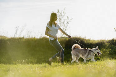 Young woman going walkies with her dog in nature - MAUF03086