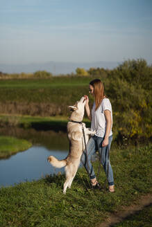 Young woman teaching her dog in nature - MAUF03092