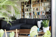 Couch and bookshelf in cozy living room - VABF02465