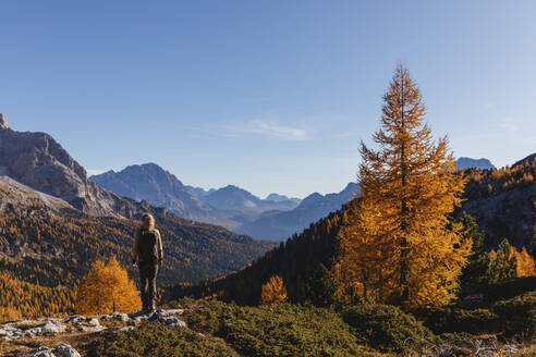Female hiker looking at the valley from the mountains, Dolomites Alps, Cortina, Italy - MRAF00429