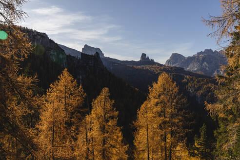Autumn mountain landscape at the morning light, Dolomites, Cortina, Italy - MRAF00432