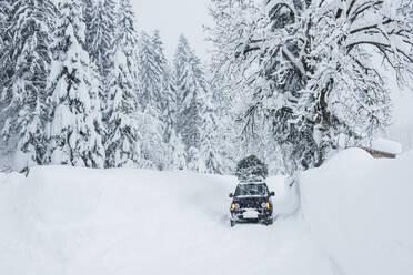 Austria, Salzburger Land, Lammertal, Car with Christmas tree on roof on snowy road - HHF05576