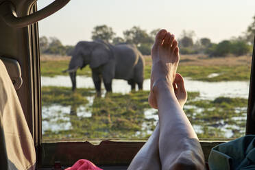 Woman with feet out of the car window watching an elephant standing in the water, Khwai, Botswana - VEGF00865
