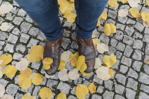 Close-up of man standing in autumn leaves on cobblestone pavement - AHSF01467