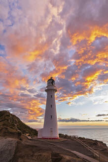Lighthouse at sunset, Castlepoint, New Zealand - FOF11260