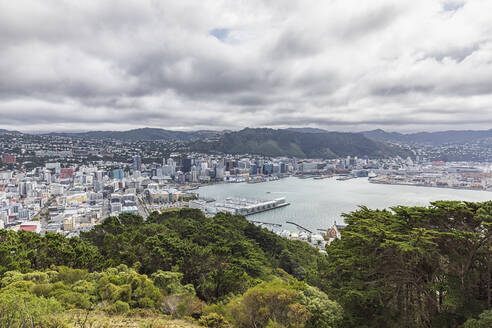 New Zealand, Wellington, Clouds over coastal city seen from summit ofMount Victoria - FOF11266