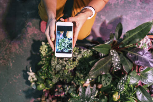Close-up of woman taking smartphone picture of plants - VPIF01867