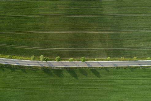 Germany, Bavaria, Aerial view of treelined road stretching between vast countryside fields - RUEF02397