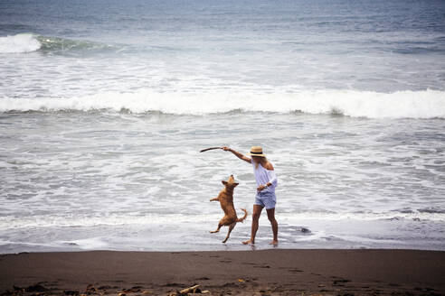 Happy woman playing with dog at beach - CAVF69658