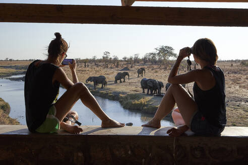Woman watching and taking pictures of a herd of elephants in the river from a viewpoint, Hwange National Park, Zimbabwe - VEGF01043