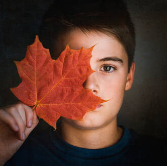 Close up portrait of boy covering half of his face with a maple leaf. - CAVF70144