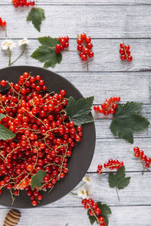 Overhead view of red currants on wooden table - CAVF70285