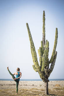Rear view of woman doing bird of paradise yoga while standing by cactus at beach against clear sky - CAVF70422